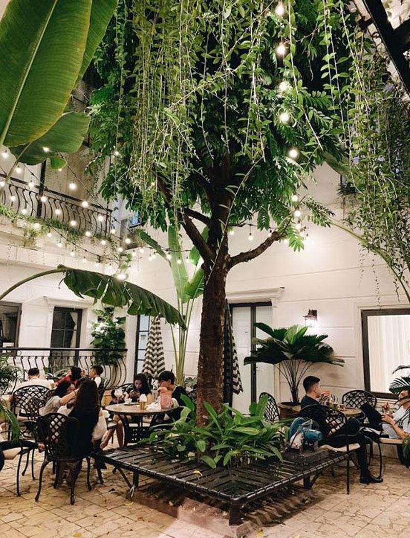 mở quán cafe sân vườn nhỏ trong nhà
